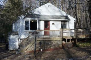 13 Freehold Ct, West Milford Twp., NJ 07421 (MLS #3367094) :: The Dekanski Home Selling Team