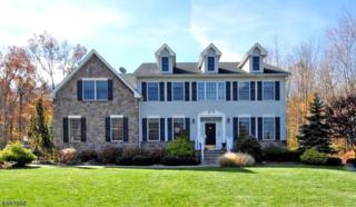 17 Reger Rd, Roxbury Twp., NJ 07876 (MLS #3367097) :: The Dekanski Home Selling Team