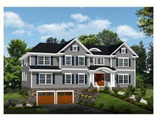 107 Long View Ave, Chatham Twp., NJ 07928 (MLS #3367161) :: The Dekanski Home Selling Team