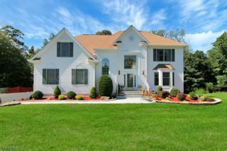 44 Scheurman Ter, Green Brook Twp., NJ 07059 (MLS #3367175) :: The Dekanski Home Selling Team