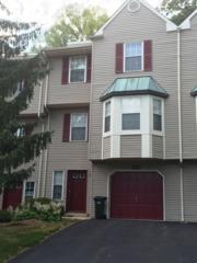 122 Pinehurst Dr, Washington Twp., NJ 07882 (MLS #3367197) :: The Dekanski Home Selling Team