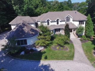 6 Willow Woods Way, Warren Twp., NJ 07059 (MLS #3367410) :: The Dekanski Home Selling Team