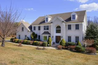 3 Codington Ln, Warren Twp., NJ 07059 (MLS #3367464) :: The Dekanski Home Selling Team