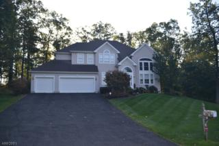 5 Augusta Ct, Fredon Twp., NJ 07860 (MLS #3367469) :: The Dekanski Home Selling Team