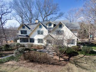 75 Pollard Rd, Mountain Lakes Boro, NJ 07046 (MLS #3367481) :: The Dekanski Home Selling Team