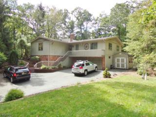 109 Forest Lake Dr N, Byram Twp., NJ 07821 (MLS #3367549) :: The Dekanski Home Selling Team
