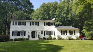 26 Franklin Rd, Mendham Boro, NJ 07945 (MLS #3367560) :: The Dekanski Home Selling Team