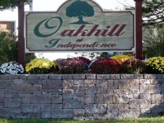 106 Kemper Ct, Independence Twp., NJ 07840 (MLS #3367587) :: The Dekanski Home Selling Team