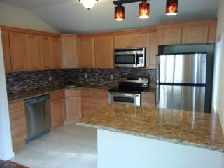 114 Glen Rd, Vernon Twp., NJ 07422 (MLS #3367598) :: The Dekanski Home Selling Team