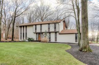 1 Overbrook Rd, Randolph Twp., NJ 07869 (MLS #3367703) :: The Dekanski Home Selling Team