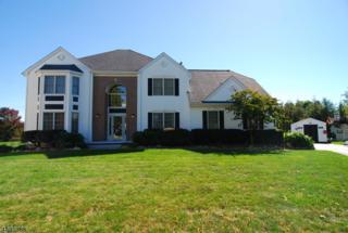 9 Irving Ct, Roxbury Twp., NJ 07852 (MLS #3367739) :: The Dekanski Home Selling Team