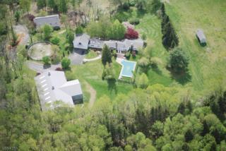 908 Fairview Lake Ln, Stillwater Twp., NJ 07860 (MLS #3367939) :: The Dekanski Home Selling Team