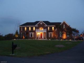 2 Asher Smith Rd, Union Twp., NJ 08867 (MLS #3368012) :: The Dekanski Home Selling Team
