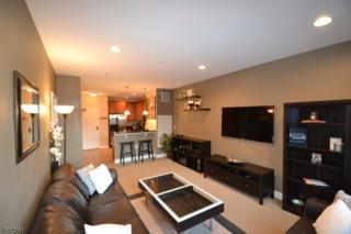 6302 Brookhaven Ct, Riverdale Boro, NJ 07457 (MLS #3368184) :: The Dekanski Home Selling Team