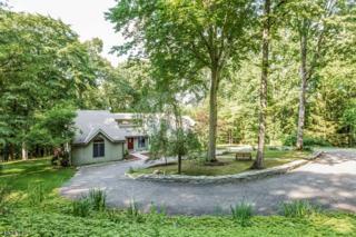 238 River Rd, Franklin Twp., NJ 08801 (MLS #3368195) :: The Dekanski Home Selling Team