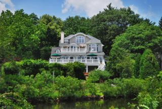 260 Boulevard, Mountain Lakes Boro, NJ 07046 (MLS #3368220) :: The Dekanski Home Selling Team