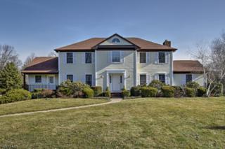11 Brookfield Dr, Bernards Twp., NJ 07920 (MLS #3368327) :: The Dekanski Home Selling Team