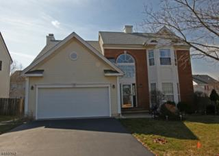 38 Cascades Ter, Branchburg Twp., NJ 08876 (MLS #3368452) :: The Dekanski Home Selling Team