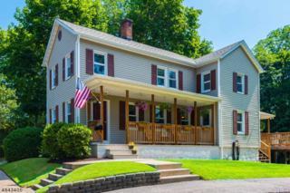 608 Old Boonton Rd, Boonton Town, NJ 07005 (MLS #3368453) :: The Dekanski Home Selling Team