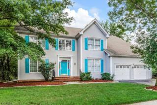 20 Mcbride Way, Bridgewater Twp., NJ 08807 (MLS #3368509) :: The Dekanski Home Selling Team