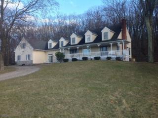 503 Drakestown Rd, Washington Twp., NJ 07853 (MLS #3368560) :: The Dekanski Home Selling Team