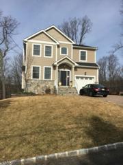 48 Shawnee Ave, Rockaway Twp., NJ 07866 (MLS #3368612) :: The Dekanski Home Selling Team