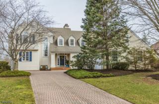 1 La Costa Court, Montgomery Twp., NJ 08558 (MLS #3368615) :: The Dekanski Home Selling Team