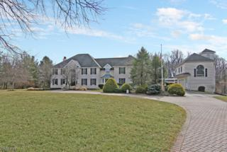 1 Pine Pl, Clinton Twp., NJ 08801 (MLS #3368669) :: The Dekanski Home Selling Team