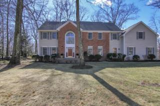 3 Croyden Rd, Morris Twp., NJ 07960 (MLS #3368803) :: The Dekanski Home Selling Team