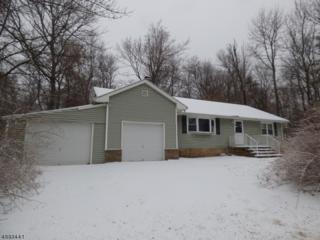 657 Canistear Rd, Vernon Twp., NJ 07422 (MLS #3368811) :: The Dekanski Home Selling Team
