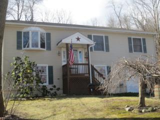 302 E Lakeshore Dr, Vernon Twp., NJ 07422 (MLS #3368824) :: The Dekanski Home Selling Team