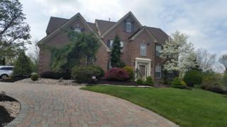61 Rue Chagall, Franklin Twp., NJ 08873 (MLS #3368833) :: The Dekanski Home Selling Team