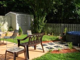51 Shady Ln, Hardyston Twp., NJ 07419 (MLS #3368976) :: The Dekanski Home Selling Team