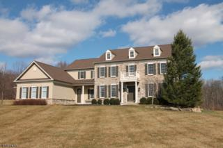 14 Perry Rd, Clinton Twp., NJ 08801 (MLS #3369012) :: The Dekanski Home Selling Team