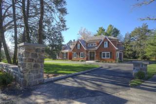 89 Stewart Rd, Millburn Twp., NJ 07078 (MLS #3369084) :: The Dekanski Home Selling Team