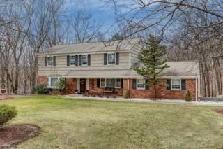 62 Stony Brook Rd, Montville Twp., NJ 07045 (MLS #3369106) :: The Dekanski Home Selling Team