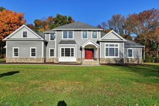 6 Shepherds Ln, Roxbury Twp., NJ 07876 (MLS #3369127) :: The Dekanski Home Selling Team