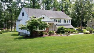 42 Radtke Rd, Randolph Twp., NJ 07869 (MLS #3369152) :: The Dekanski Home Selling Team