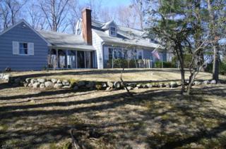 50 Morris Lake Rd, Sparta Twp., NJ 07871 (MLS #3369235) :: The Dekanski Home Selling Team