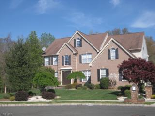 8 Red Oak Ct, Franklin Twp., NJ 08873 (MLS #3369422) :: The Dekanski Home Selling Team