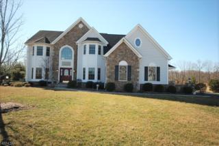 7 Severns Way, Delaware Twp., NJ 08559 (MLS #3369471) :: The Dekanski Home Selling Team