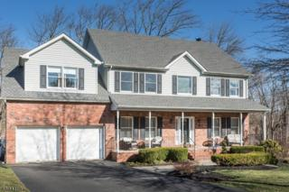 133 Brandon Ct, Branchburg Twp., NJ 08853 (MLS #3369473) :: The Dekanski Home Selling Team
