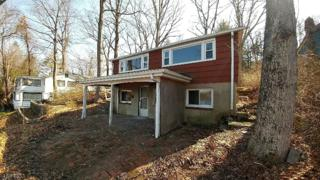 101 Wildwood Rd, Jefferson Twp., NJ 07438 (MLS #3369518) :: The Dekanski Home Selling Team