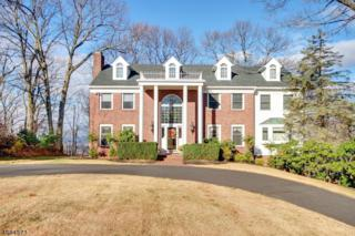 38 Timberline Dr, Bridgewater Twp., NJ 08807 (MLS #3369759) :: The Dekanski Home Selling Team
