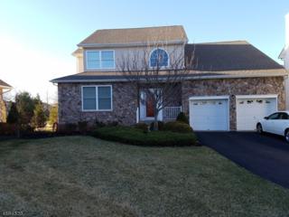 27 Higgins Ct, Raritan Twp., NJ 08822 (MLS #3369762) :: The Dekanski Home Selling Team