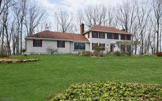 10 Clearview Dr, Washington Twp., NJ 07853 (MLS #3369768) :: The Dekanski Home Selling Team