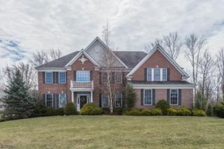 3 Setting Sun Dr, Washington Twp., NJ 07853 (MLS #3369819) :: The Dekanski Home Selling Team