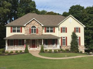 8 Liberty Trl, Andover Twp., NJ 07860 (MLS #3370027) :: The Dekanski Home Selling Team
