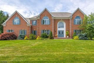 14 Blueberry Ct, Mahwah Twp., NJ 07430 (MLS #3370039) :: The Dekanski Home Selling Team