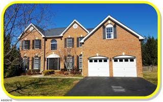 40 Ramapo Drive, Bernards Twp., NJ 07920 (MLS #3370151) :: The Dekanski Home Selling Team